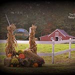Share with Me a Bountiful Harvest by Sandy Craig