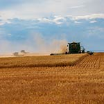 Finalist: Harvest Time on the Front by Patrick Greany