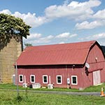 Finalist: Red Barn and Silo with Tree Top by Robert Baker